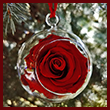 The Scarlet White House Rose Garden Ornament