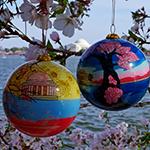 2013 - 2014 Cherry Blossom Set