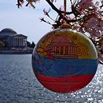 2014 Official Cherry Blossom Ornament